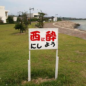Neta_041_cocolog_oekaki_2010_03_13_